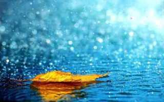 Дождь во сне к чему снится – сон попасть под ливень