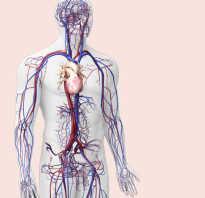 Самая несерьезная болезнь 100 к 1 ответ: серьезные заболевания