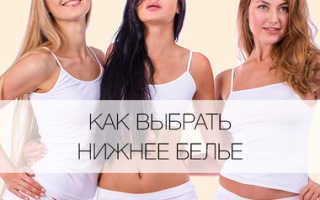 Попа в трусиках фото: форма женских трусов название