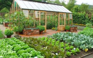 Планирование сада и огорода на участке, план дача