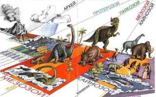 Эры по порядку с самой древней, эпохи земли