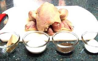 Маринад для цыпленка табака в духовке: курица под прессом