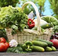 Вегетарианская диета для похудения на 10 кг: лактовегетарианство меню на каждый день