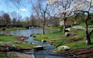 Какие изменения происходят весной в неживой природе – сезонные явления