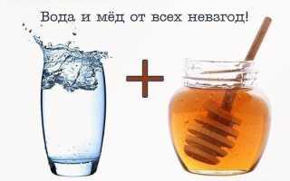Теплая вода с медом на ночь: медовая водичка