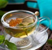 Ортосифона тычиночного почечного чая листья инструкция отзывы