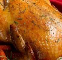 При какой температуре жарят курицу в духовке?