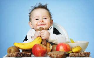 Меню в 9 месяцев при искусственном вскармливании, рацион питания 9 месячного