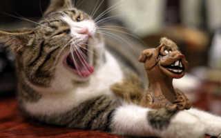 Почему возникает зевота, что такое зевание?
