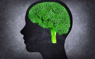 Продукты для мозга и памяти взрослым, что нужно есть чтобы улучшить память?