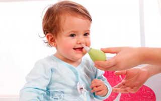 Каланхоэ фото лечебный от насморка ребенку