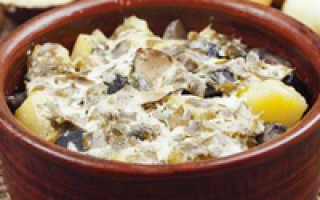 Как приготовить маслята быстро и вкусно – приготовления маслят