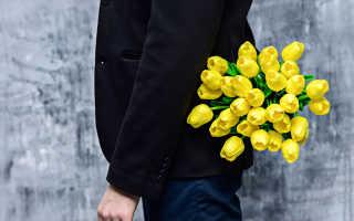 Желтые тюльпаны вестники разлуки