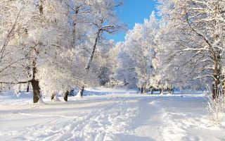 Народные приметы про зиму