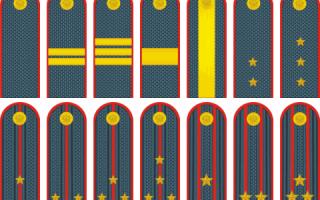 Три звезды на погонах какое звание МВД: лычки сержант