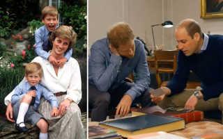Сыновья принцессы Дианы: последний разговор с мамой