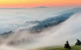 Туман как образуется и почему возникает