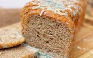 Что делать, если съел хлеб с плесенью, в том числе ребёнок