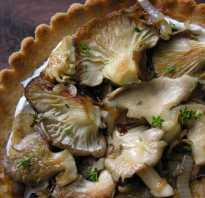 Сколько готовить вешенки в сковороде по времени, грибы вешки приготовление