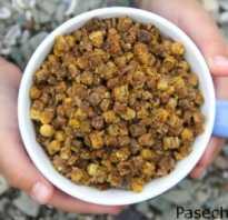 Перга пчелиная полезные свойства для женщин